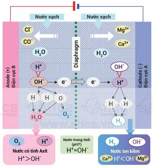 Xử lý nước của máy lọc nước ion kiềm