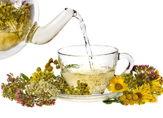 trà thảo mộc giúp thanh lọc cơ thể
