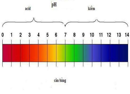 Bảng đo độ pH trong dung dịch