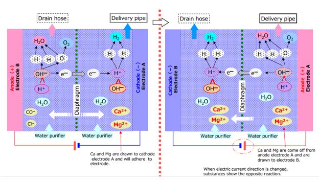 Dòng điện đảo chiều giúp đánh bật các ion canxi và magie bám trên bề mặt điện cực A