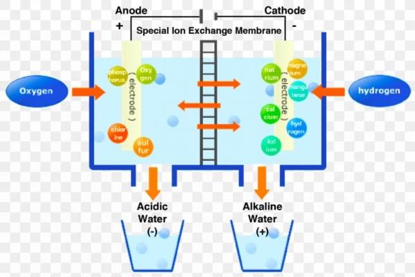 Cấu tạo nguyên lý bộ điện phân tạo nước ion kiềm